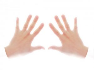 両手、ハンド、右手、左手