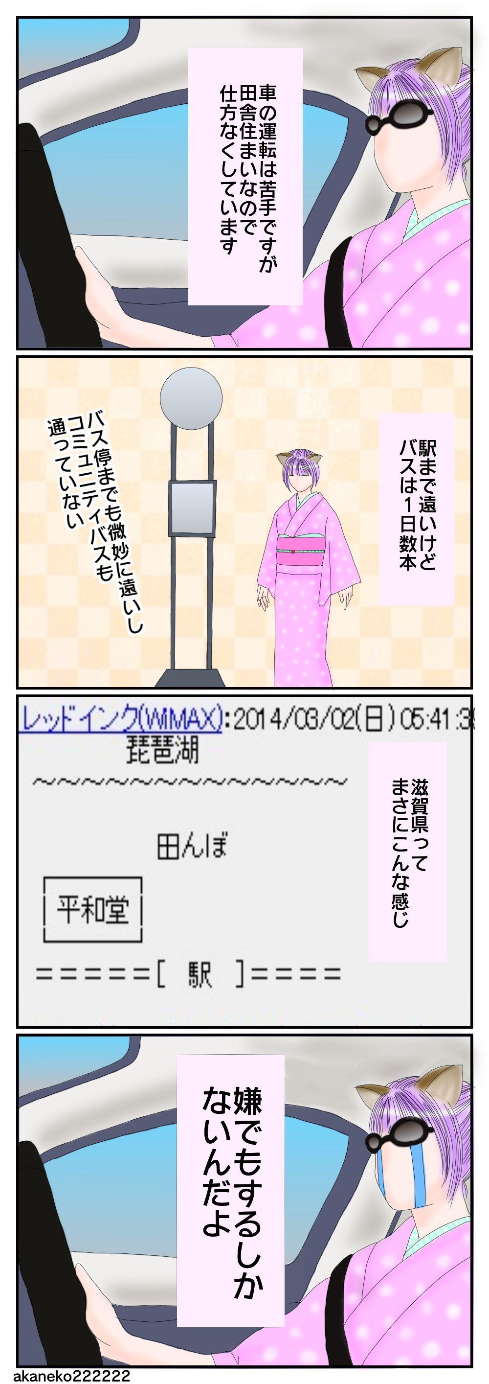 車を運転する滋賀県民の女性