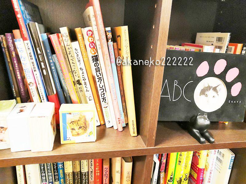 コネッコさんの本棚