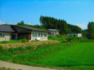 田んぼと家の写真