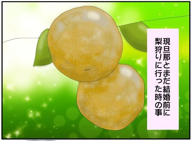 梨狩りのイラスト