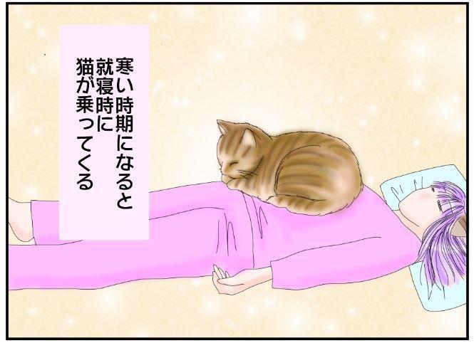 寝ていると猫が乗ってくる